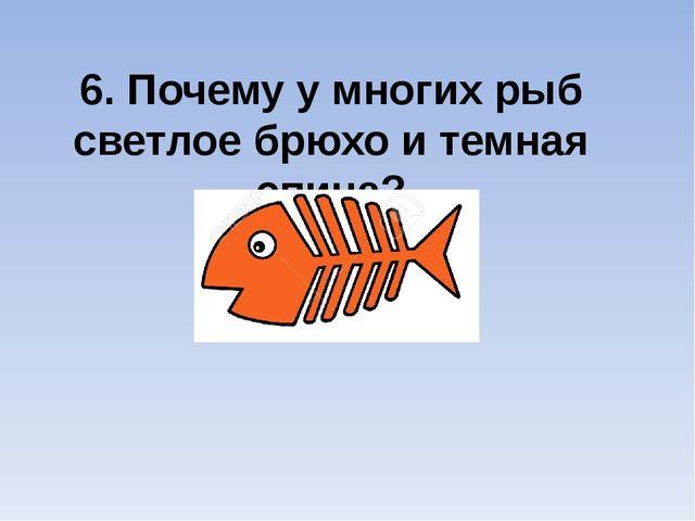 6. Почему у многих рыб светлое брюхо и темная спина?