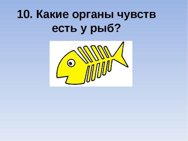 10. Какие органы чувств есть у рыб?
