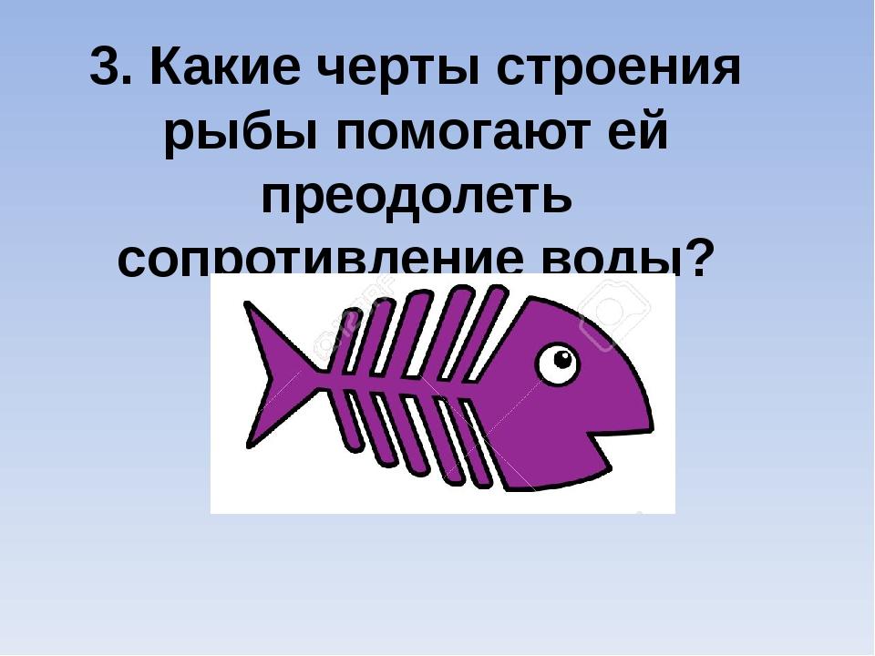 3. Какие черты строения рыбы помогают ей преодолеть сопротивление воды?