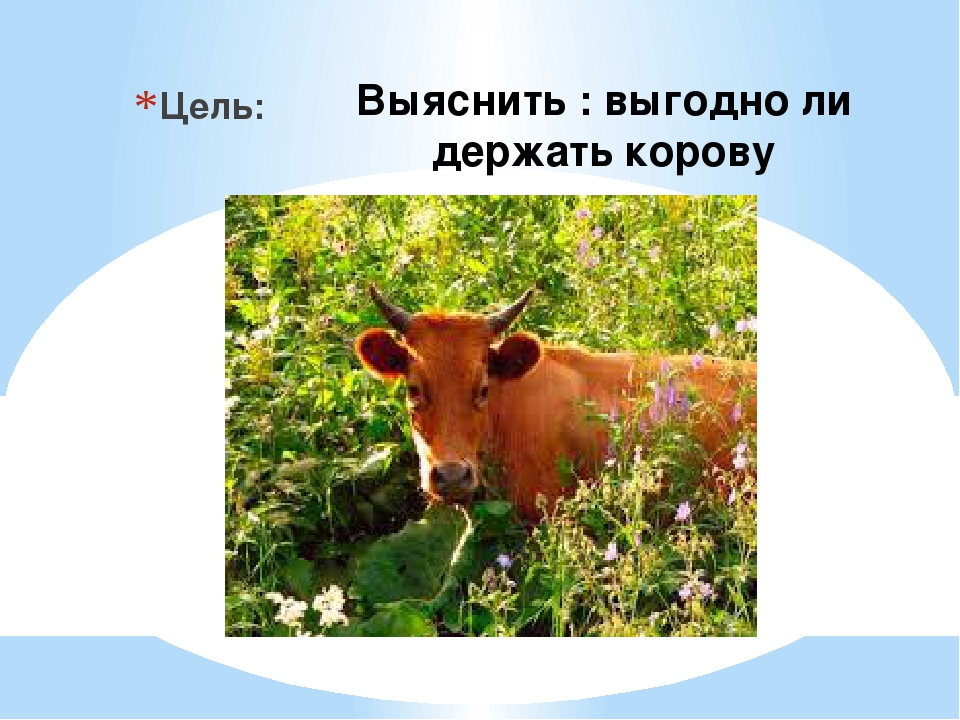 Выяснить : выгодно ли держать корову Цель: