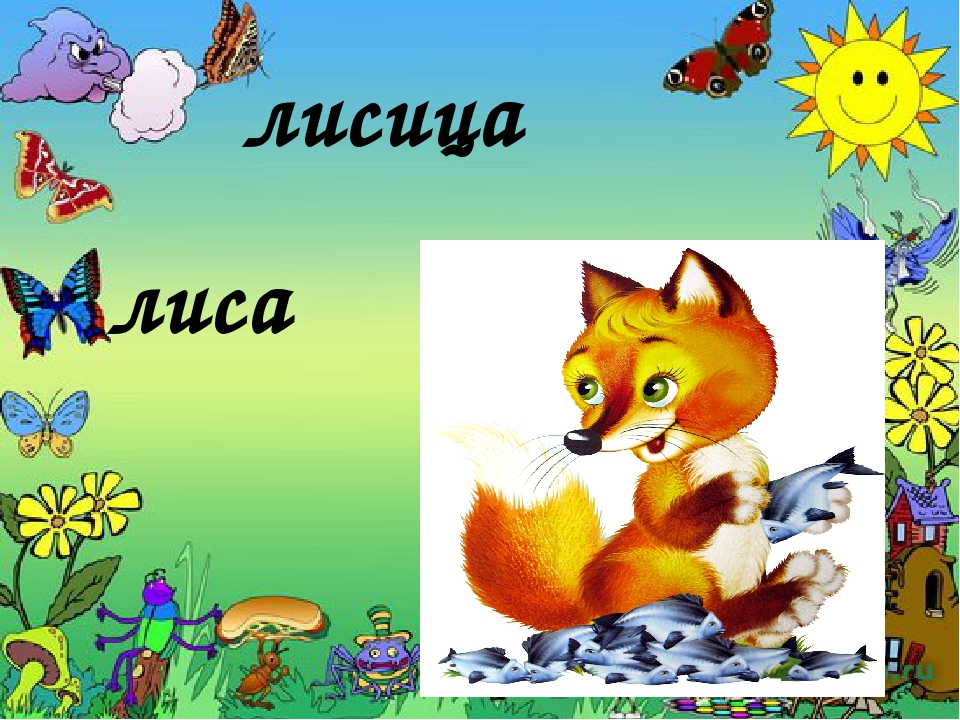 лисица лиса