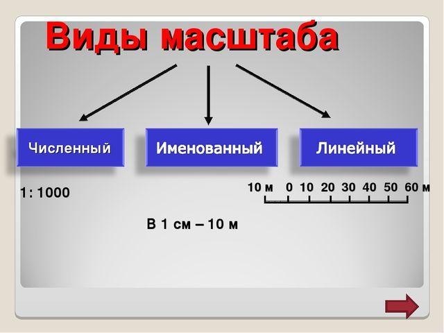 Виды масштаба 1: 1000 В 1 см – 10 м