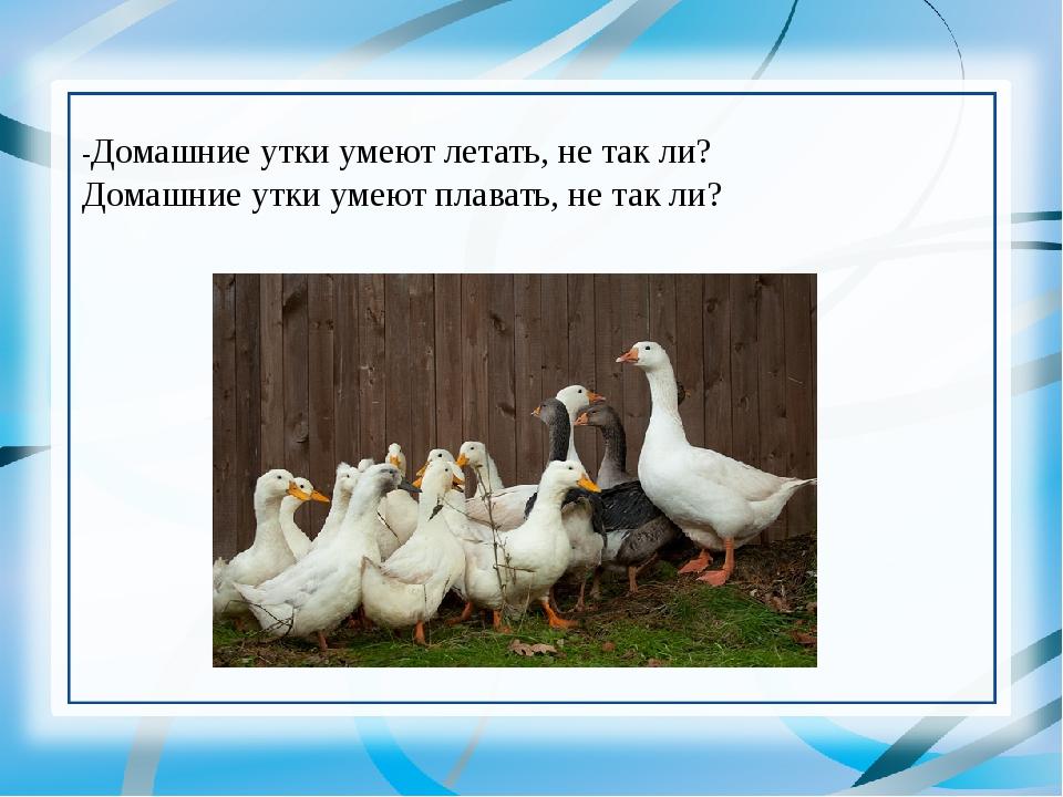 -Домашние утки умеют летать, не так ли? Домашние утки умеют плавать, не так ли?
