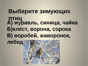 Выберите зимующих птиц А) журавль, синица, чайка Б)клёст, ворона, сорока В) в