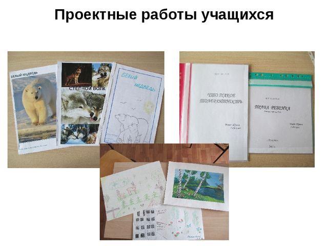 Проектные работы учащихся