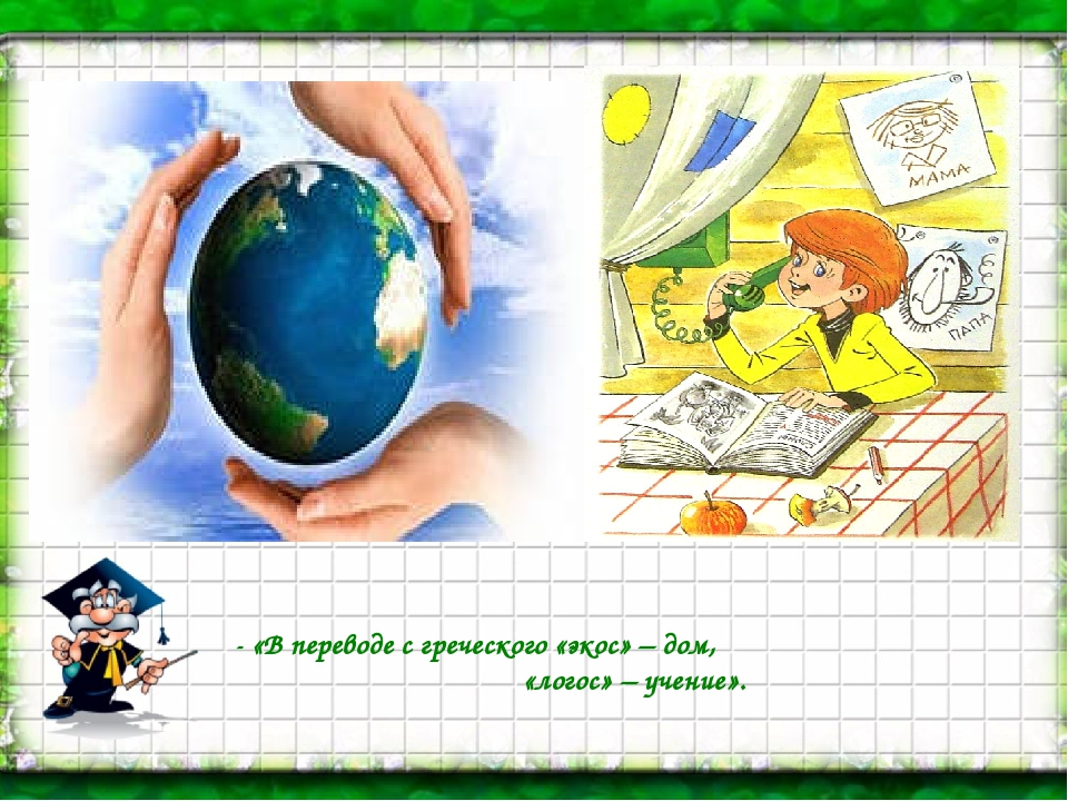 - «В переводе с греческого «экос» – дом, «логос» – учение».
