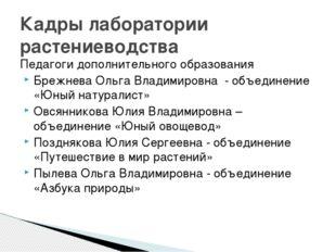 Педагоги дополнительного образования Брежнева Ольга Владимировна - объединени