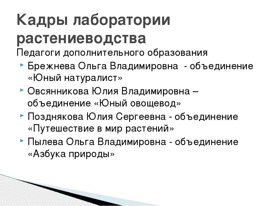 Педагоги дополнительного образования Брежнева Ольга Владимировна - объединени...
