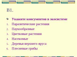 В1. Укажите консументов в экосистеме Паразитические растения Паукообразные Цв