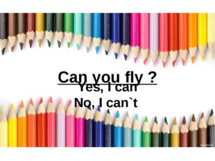 Can you fly ? Yes, I can No, I can`t