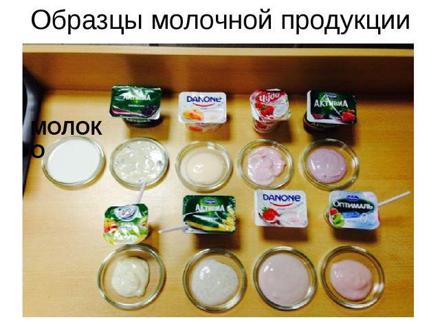 Образцы молочной продукции МОЛОКО