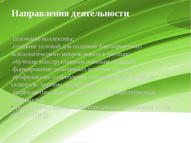 Направления деятельности сплочение коллектива; создание условий для создания...