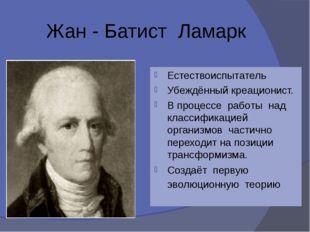 Жан - Батист Ламарк Естествоиспытатель Убеждённый креационист. В процессе ра