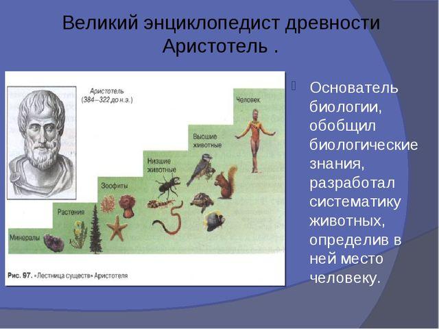 Великий энциклопедист древности Аристотель . Основатель биологии, обобщил био...