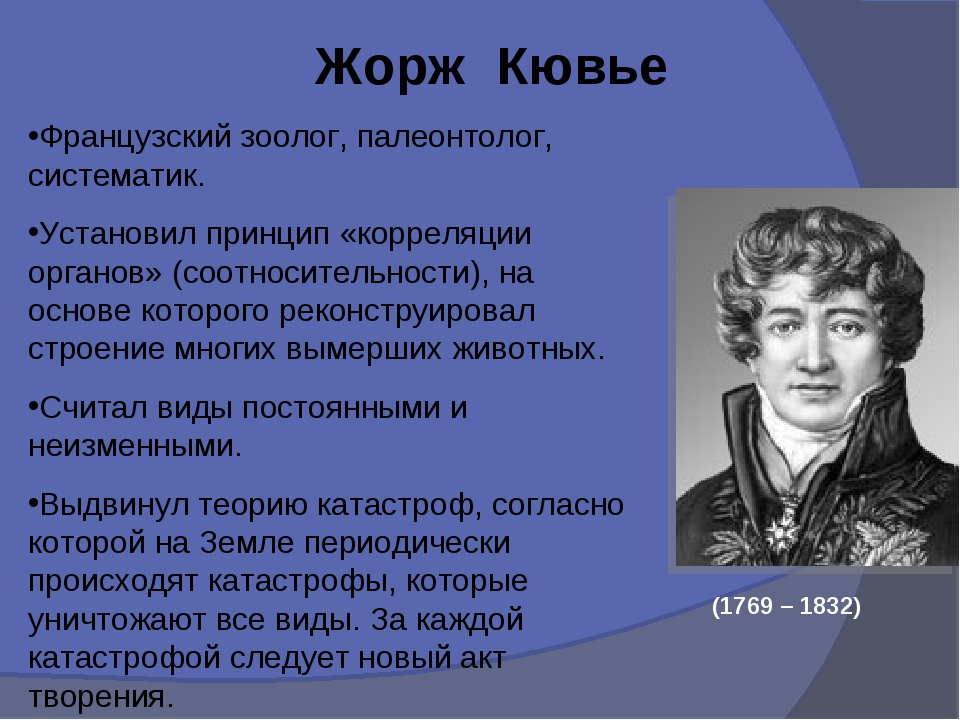 Жорж Кювье Французский зоолог, палеонтолог, систематик. Установил принцип «к...