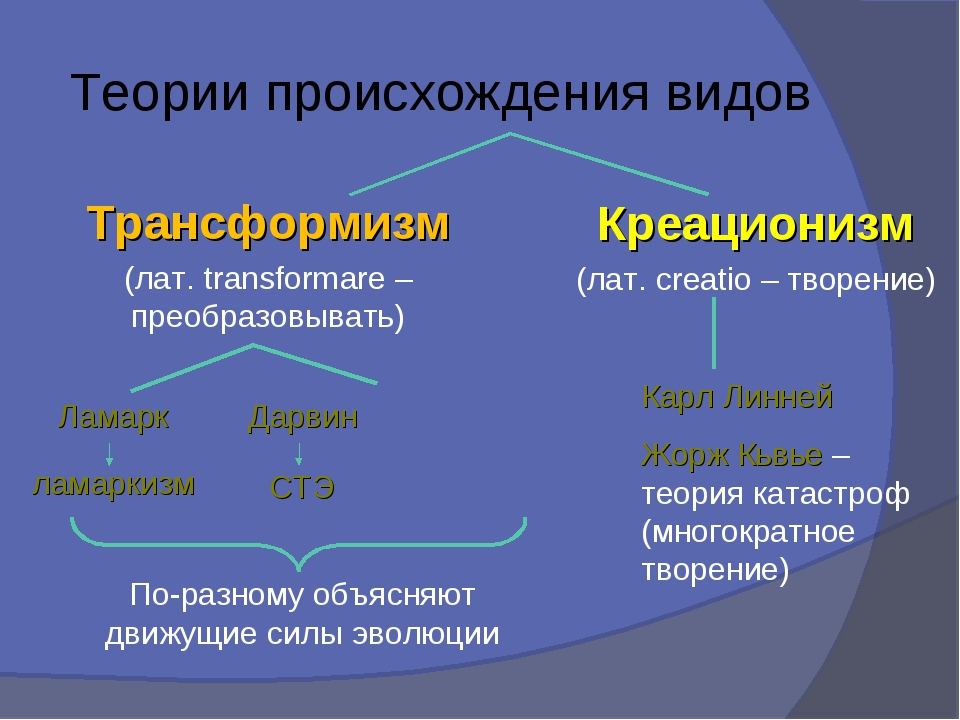 Теории происхождения видов Креационизм (лат. creatio – творение) Трансформизм...