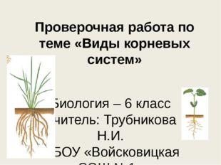 Проверочная работа по теме «Виды корневых систем» Биология – 6 класс Учитель: