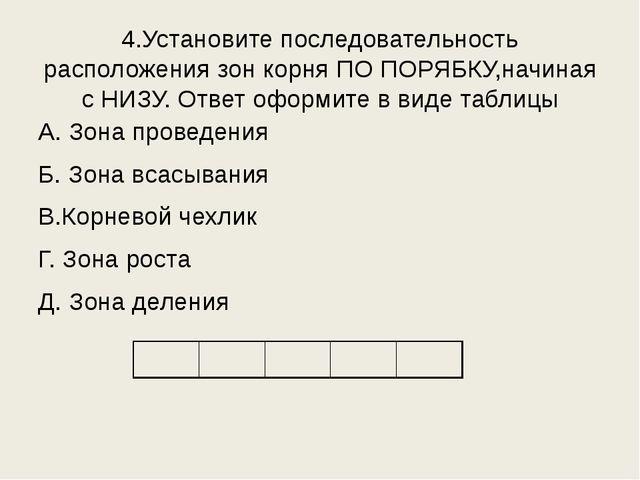 4.Установите последовательность расположения зон корня ПО ПОРЯБКУ,начиная с Н...