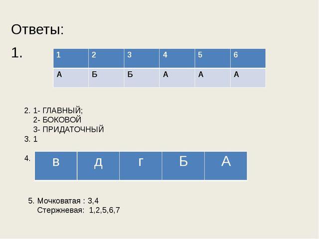 Ответы: 1. 2. 1- ГЛАВНЫЙ; 2- БОКОВОЙ 3- ПРИДАТОЧНЫЙ 3. 1 4. 5. Мочковатая : 3...