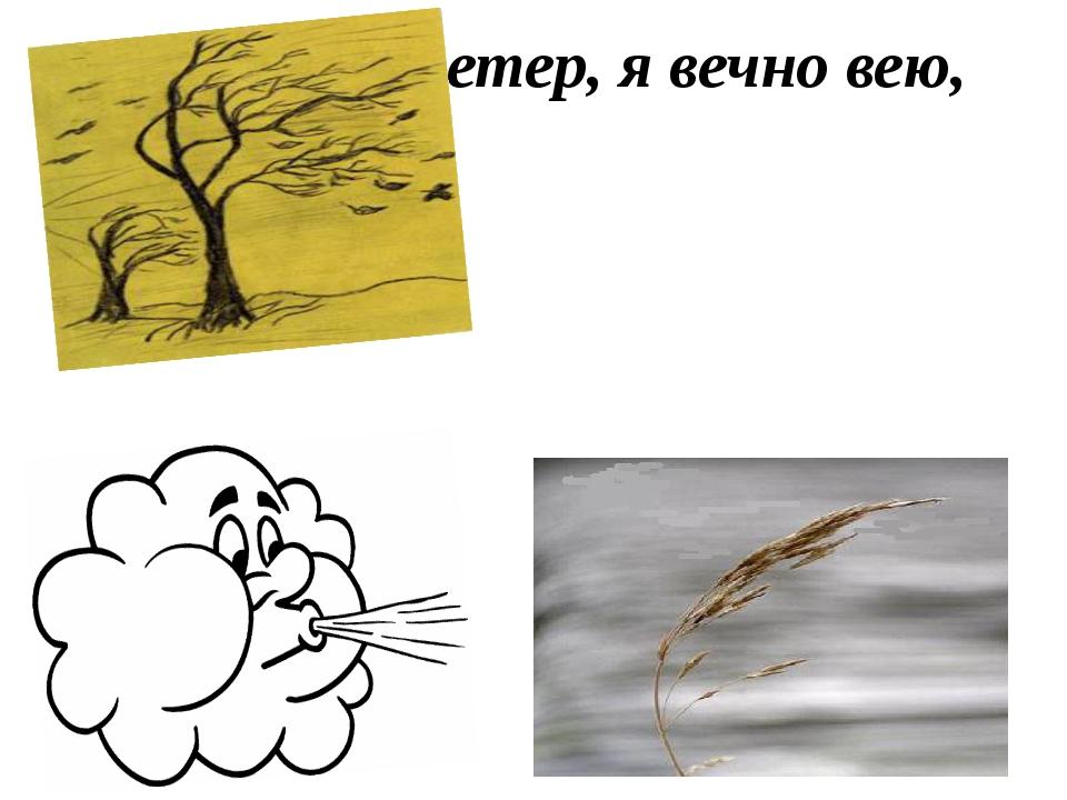 Я вольный ветер, я вечно вею,
