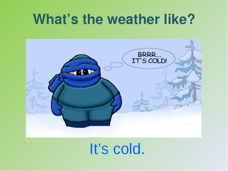 What's the weather like? It's cold.