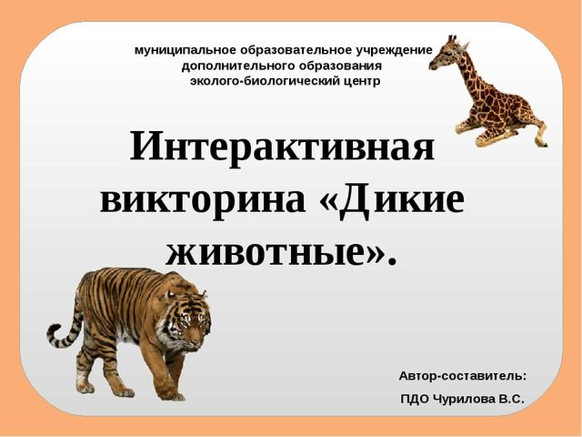 муниципальное образовательное учреждение дополнительного образования эколого-...
