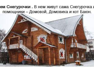 Терем Снегурочки . В нем живут сама Снегурочка и ее помощники – Домовой, Домо