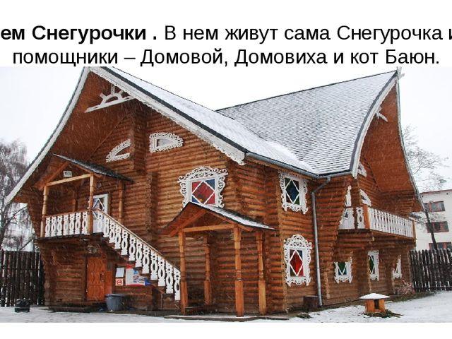 Терем Снегурочки . В нем живут сама Снегурочка и ее помощники – Домовой, Домо...