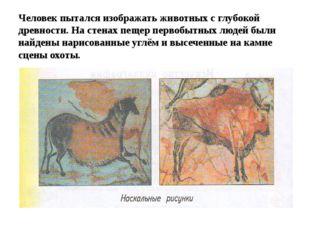 Человек пытался изображать животных с глубокой древности. На стенах пещер пер