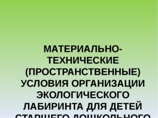 МАТЕРИАЛЬНО-ТЕХНИЧЕСКИЕ (ПРОСТРАНСТВЕННЫЕ) УСЛОВИЯ ОРГАНИЗАЦИИ ЭКОЛОГИЧЕСКОГО