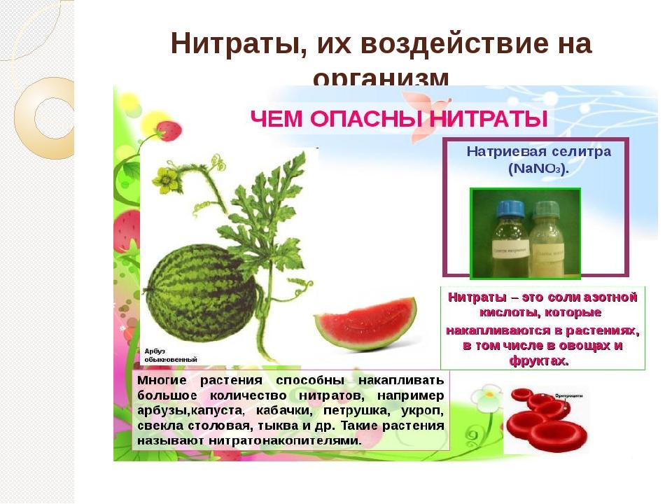 Нитраты, их воздействие на организм