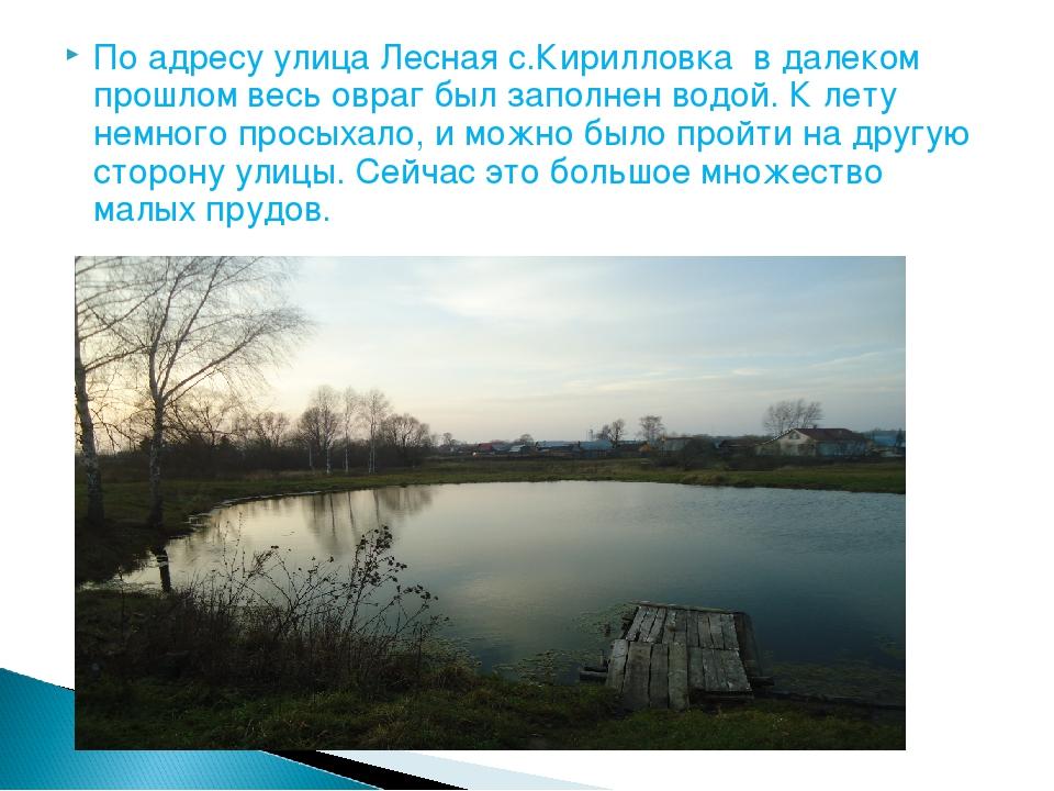 По адресу улица Лесная с.Кирилловка в далеком прошлом весь овраг был заполнен...