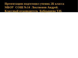 Презентацию подготовил ученик 2Б класса МБОУ СОШ №14 Локтионов Андрей. Классн