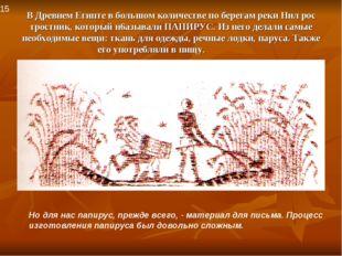 В Древнем Египте в большом количестве по берегам реки Нил рос тростник, котор
