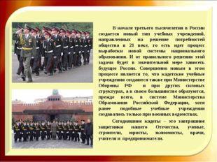 В начале третьего тысячелетия в России создается новый тип учебных учрежде