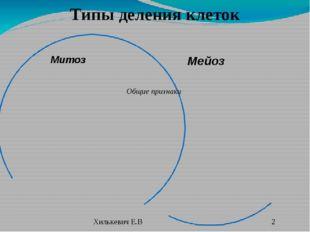 Общие признаки Типы деления клеток Мейоз Митоз Хилькевич Е.В