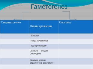 Гаметогенез и сравнения Смерматогенез Линии сравнения Овогенез Процесс Когда