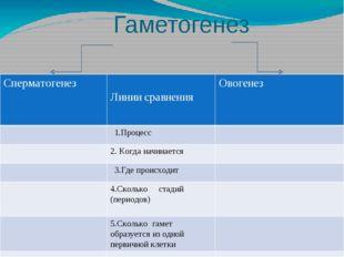 Гаметогенез и сравнения Сперматогенез Линии сравнения Овогенез 1.Процесс 2. К