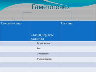 Гаметогенез и сравнения Смерматогенез Стадии(периоды развития) Овогенез Размн