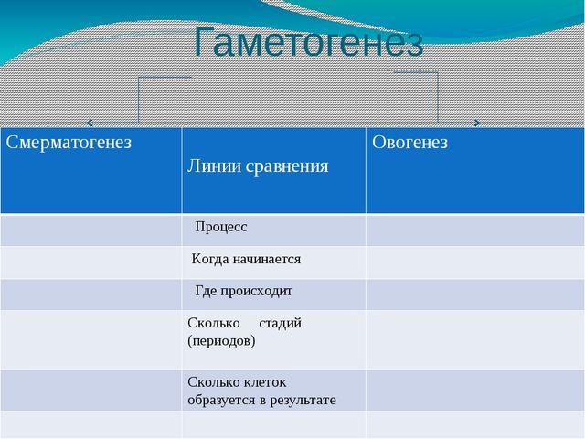 Гаметогенез и сравнения Смерматогенез Линии сравнения Овогенез Процесс Когда...