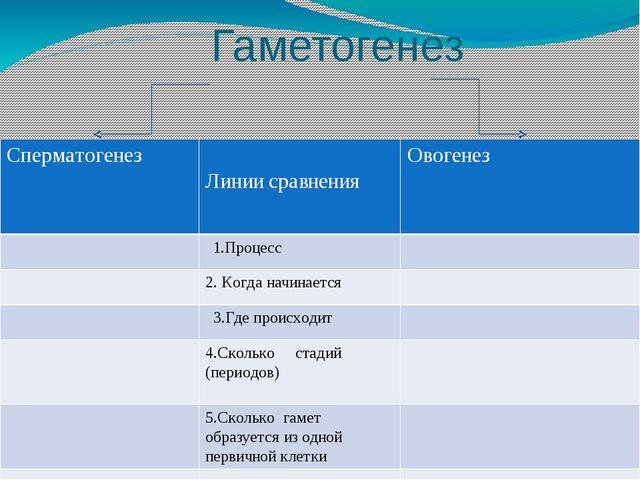 Гаметогенез и сравнения Сперматогенез Линии сравнения Овогенез 1.Процесс 2. К...