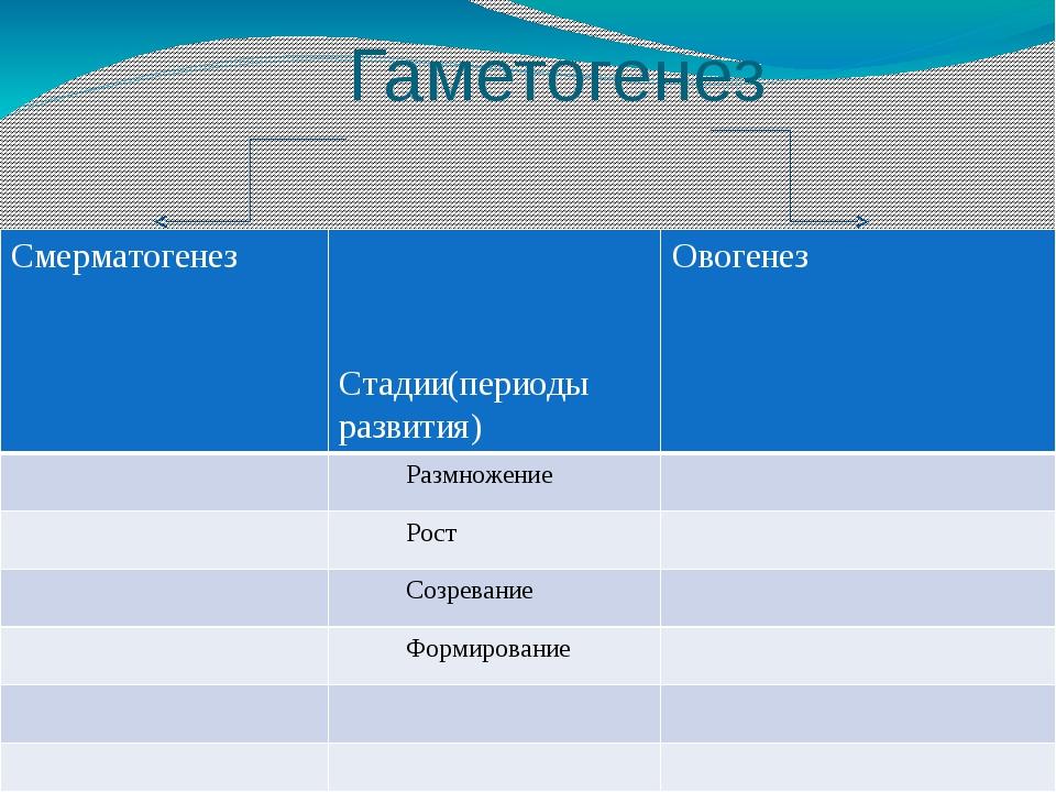 Гаметогенез и сравнения Смерматогенез Стадии(периоды развития) Овогенез Размн...