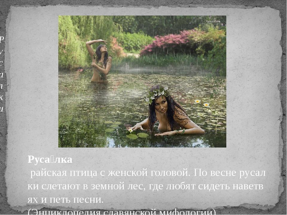 Русалки Руса́лка райскаяптицасженскойголовой.Повеснерусалкислетают...