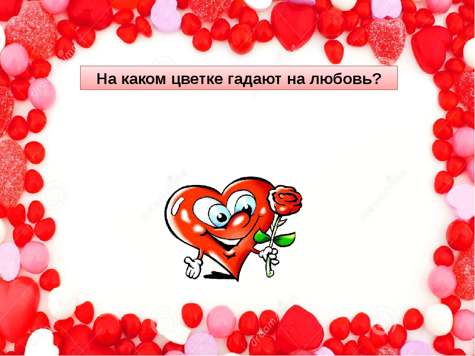 На каком цветке гадают на любовь?