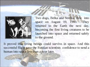 Two dogs, Belka and Strelka, flew into space on August 19, 1960. They return