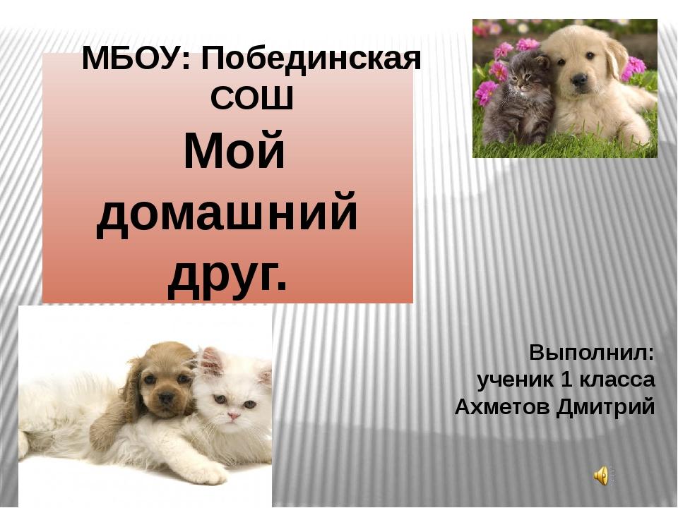 Мой домашний друг. Выполнил: ученик 1 класса Ахметов Дмитрий МБОУ: Побединск...