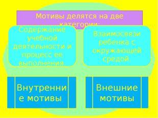 Мотивы делятся на две категории: Содержание учебной деятельности и процесс ее