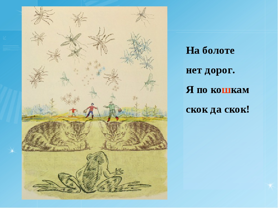 На болоте нет дорог. Я по кошкам скок да скок!