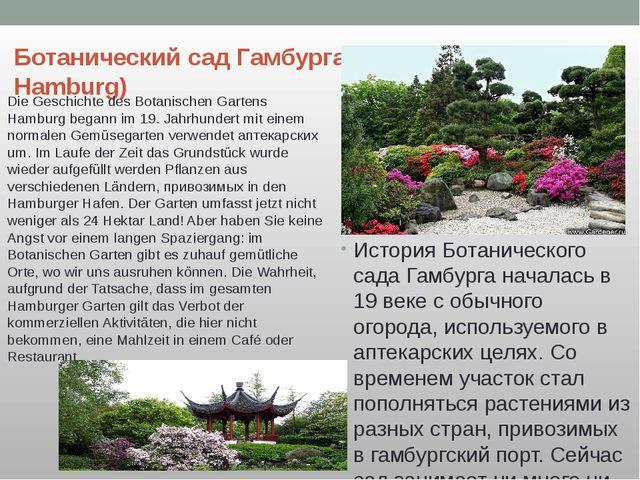 Ботанический сад Гамбурга(Botanischer Garten Hamburg) История Ботанического с...