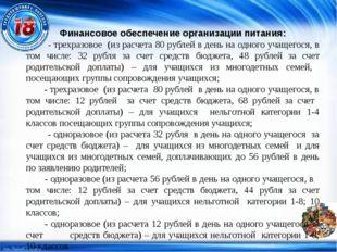 Финансовое обеспечение организации питания: - трехразовое (из расчета 80 рубл